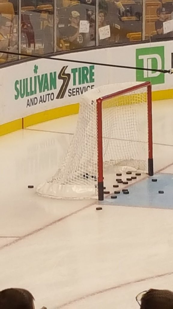 Pucks in a net