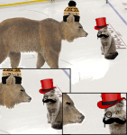 Bruins vs Fancy Cats Intensifies